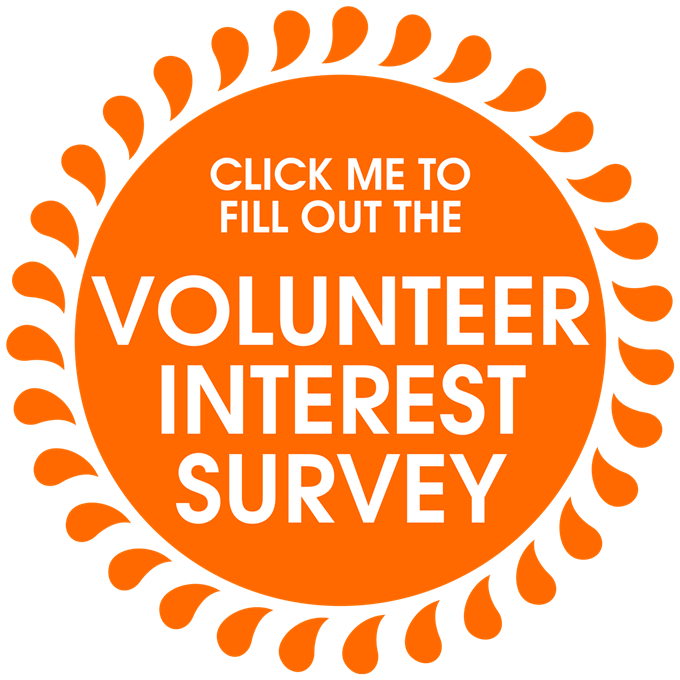 Image result for volunteer interest survey