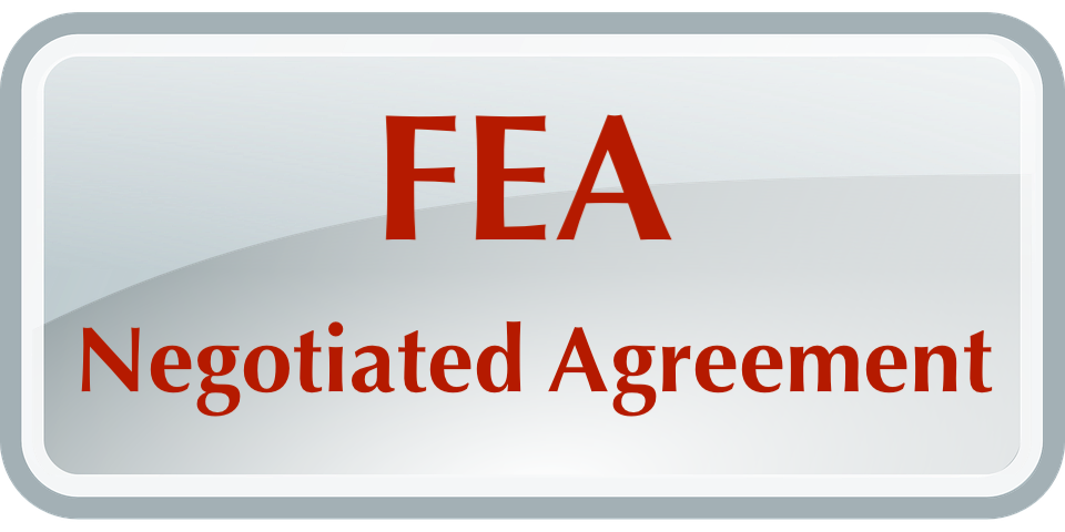 FEA Contract